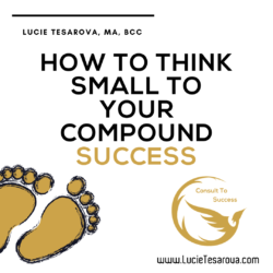 thinking small consult to success